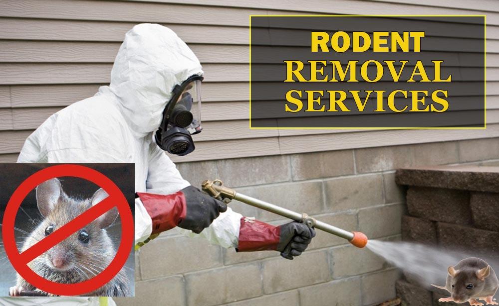 RodentControlService